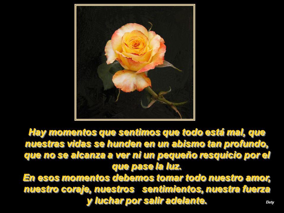 Vale la pena cada espina, cada rosa, cada lágrima que riega lo que florecerá en sonrisa, porque la vida es maravillosa por ella misma; no importan las