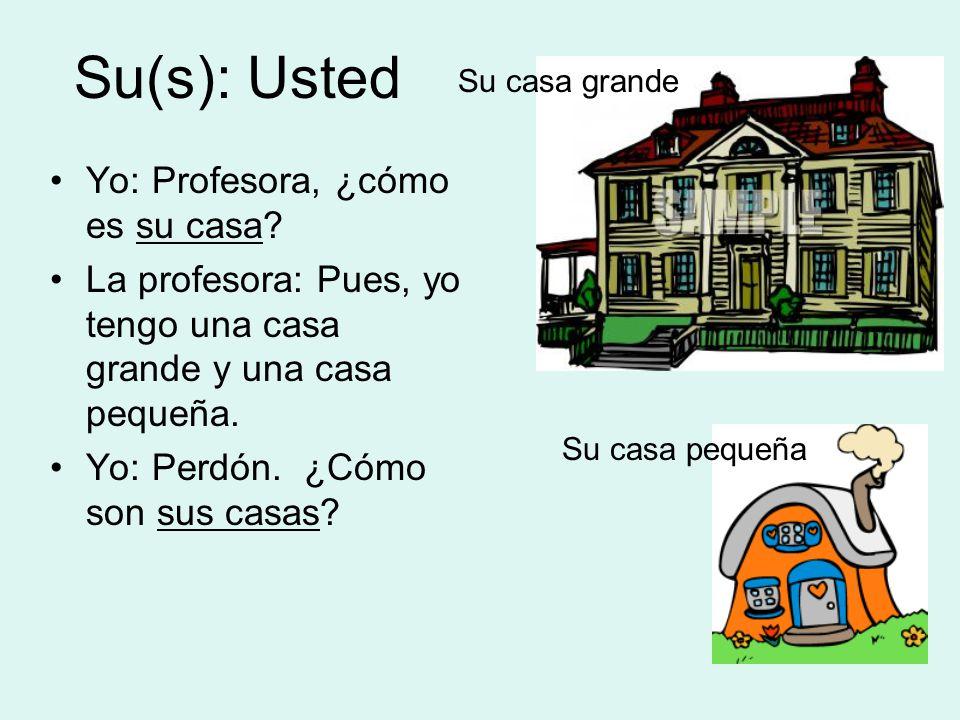 Su(s): Usted Yo: Profesora, ¿cómo es su casa.