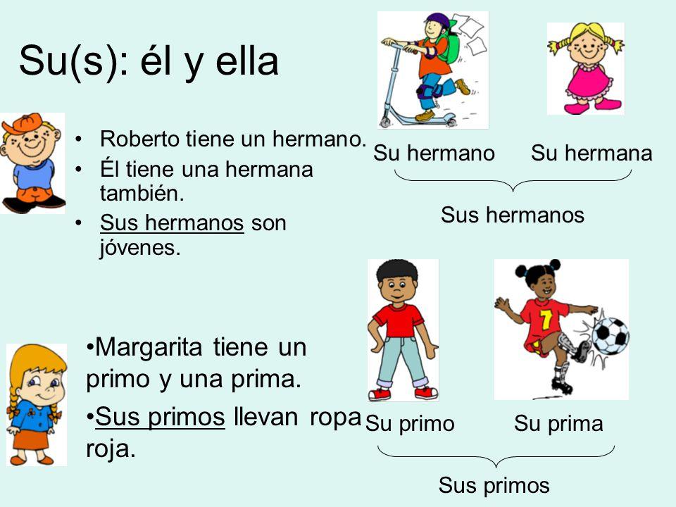 Su(s): él y ella Roberto tiene un hermano. Él tiene una hermana también.