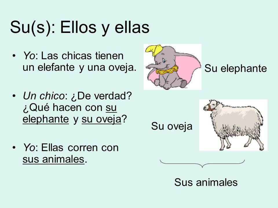 Su(s): Ellos y ellas Su elephante Su oveja Sus animales Yo: Las chicas tienen un elefante y una oveja.