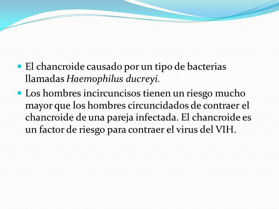Causas El chancroide causado por un tipo de bacterias llamadas Haemophilus ducreyi. Los hombres incircuncisos tienen un riesgo mucho mayor que los hom