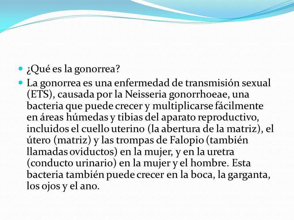 ¿Qué es la gonorrea? La gonorrea es una enfermedad de transmisión sexual (ETS), causada por la Neisseria gonorrhoeae, una bacteria que puede crecer y