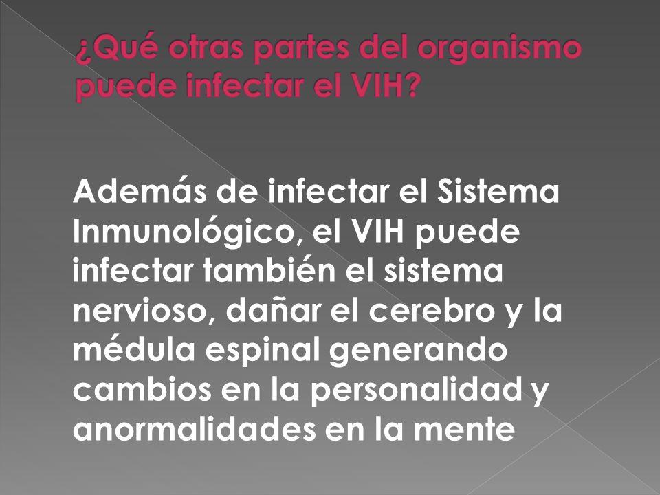 Además de infectar el Sistema Inmunológico, el VIH puede infectar también el sistema nervioso, dañar el cerebro y la médula espinal generando cambios en la personalidad y anormalidades en la mente