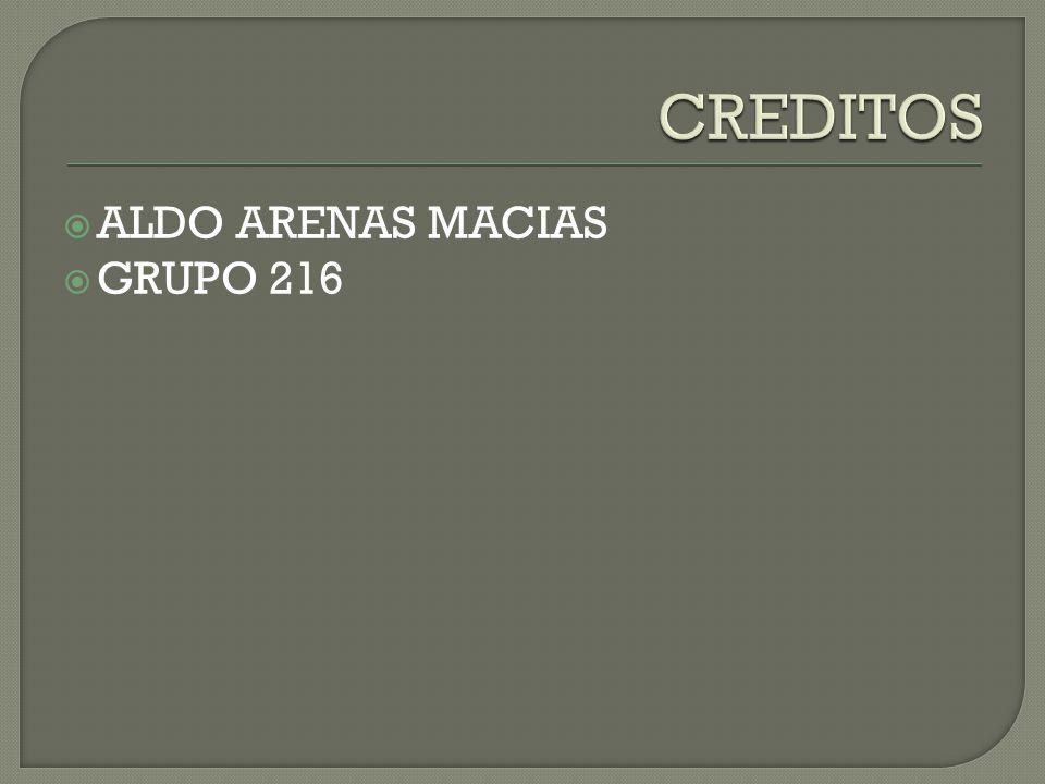  ALDO ARENAS MACIAS  GRUPO 216
