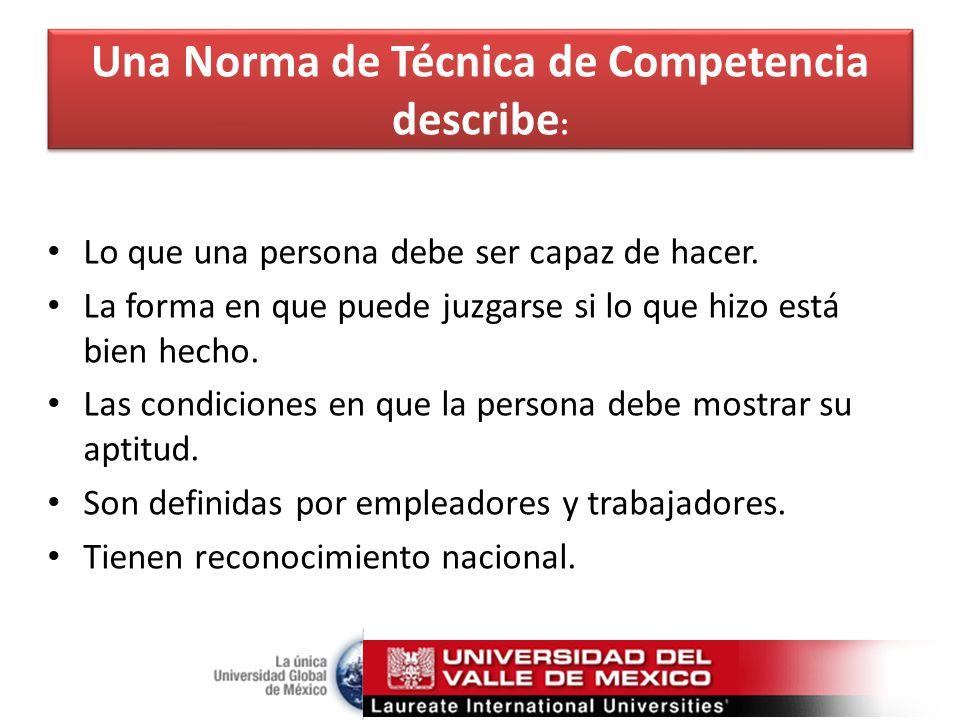 Una Norma de Técnica de Competencia describe : Lo que una persona debe ser capaz de hacer.