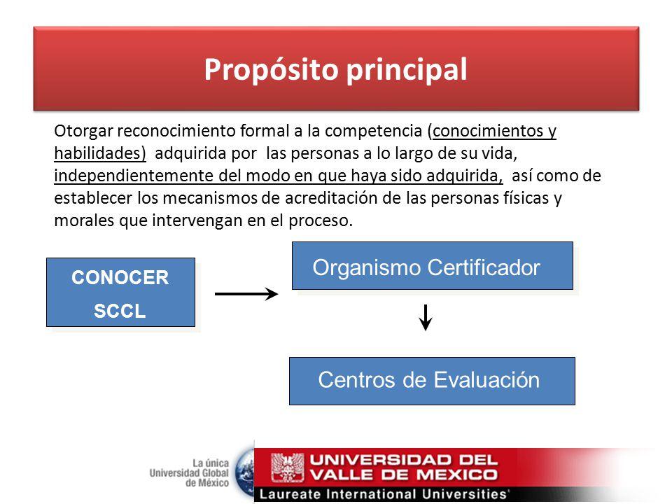 Niveles de Competencias 5 4 3 2 1 Actividades complejas, autonomía, manejo de personal, planeación, diseño, etc.
