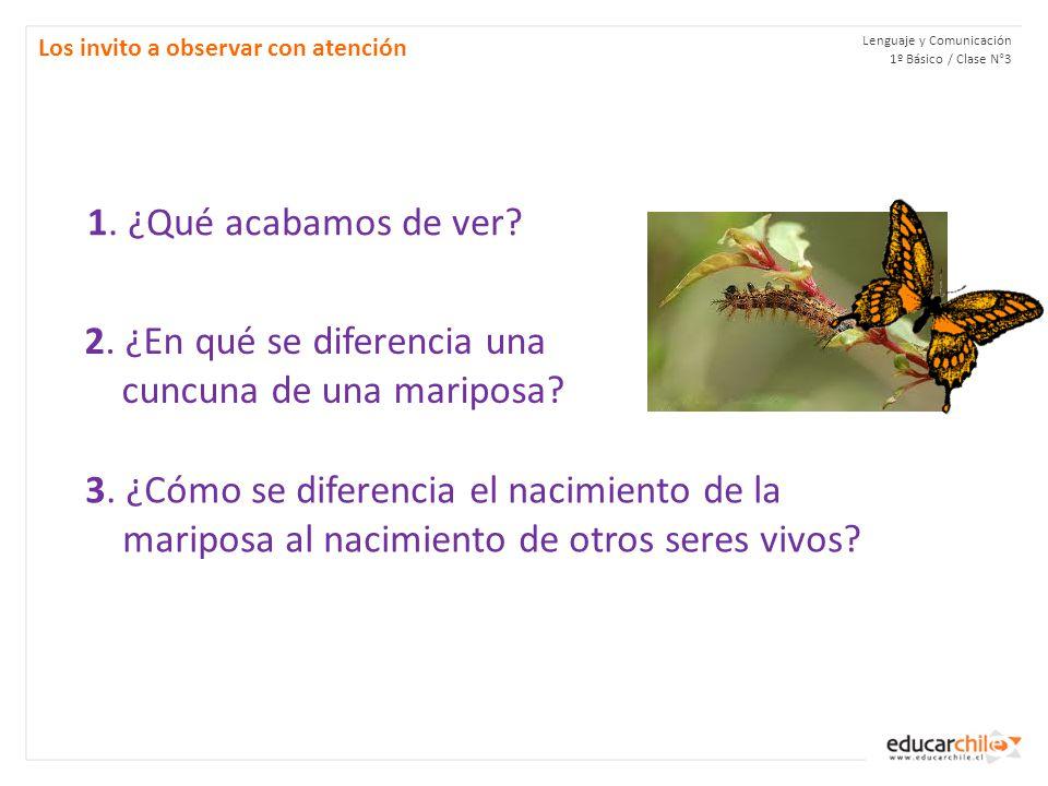 Lenguaje y Comunicación 1º Básico / Clase N°3 Los invito a observar con atención 1.