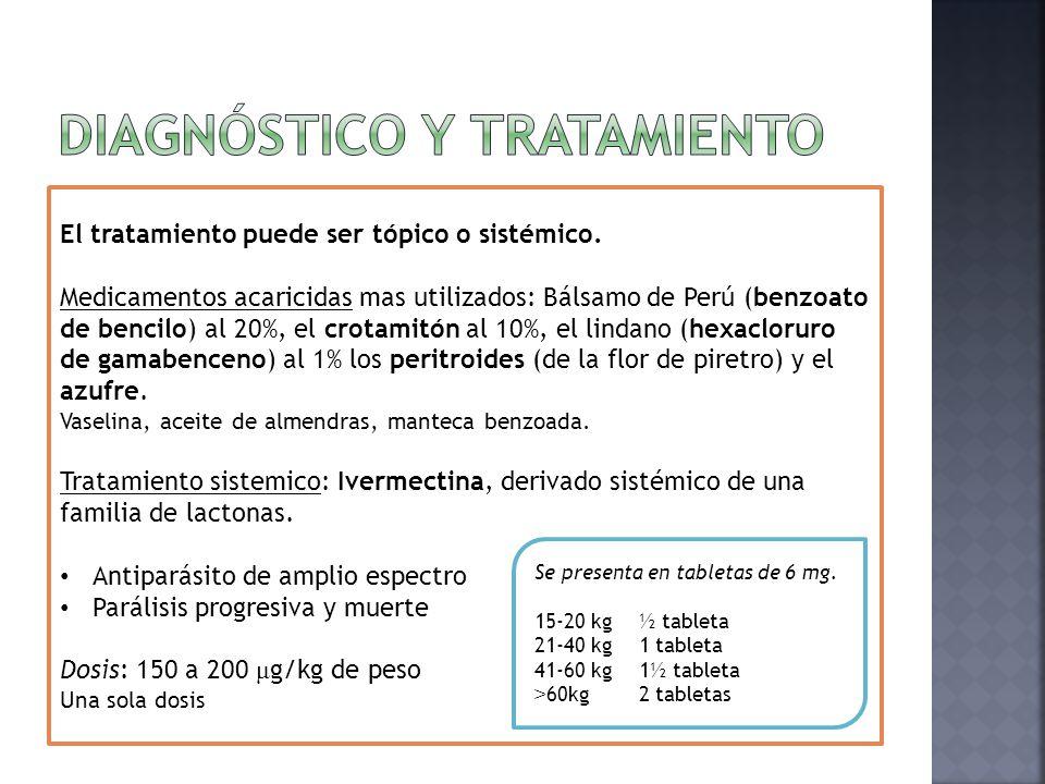  Clínico  Erupción papulosa  Costras hemáticas  Muy pruriginosa  Tratamiento.  MEDIDAS GENERALES: 1. Tratamiento de todos los convivientes del p