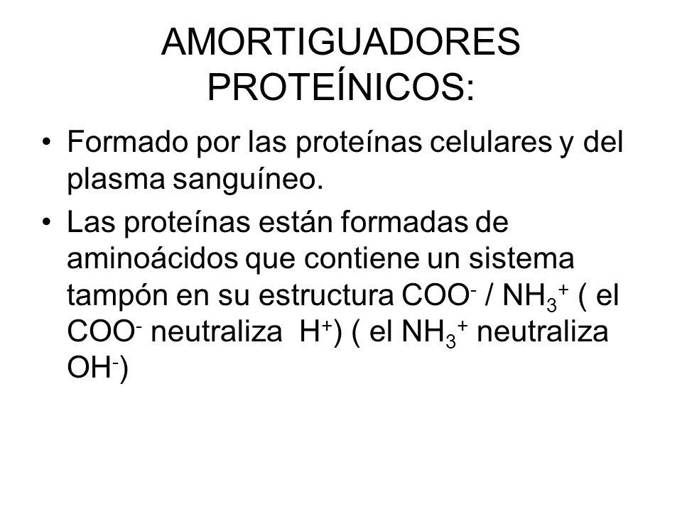AMORTIGUADORES PROTEÍNICOS: Formado por las proteínas celulares y del plasma sanguíneo.