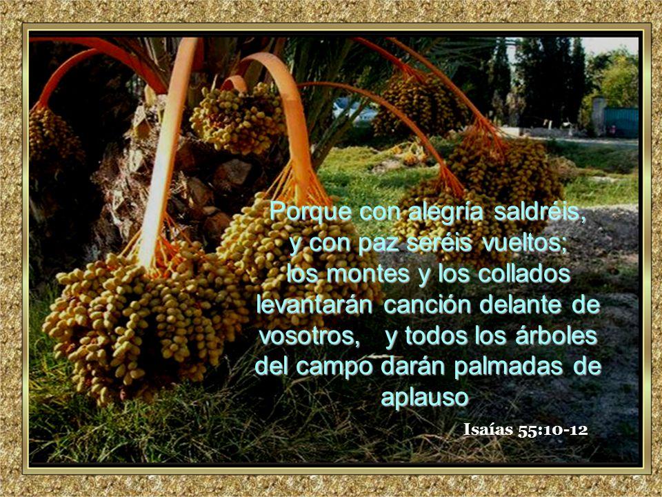 www.vitanoblepowerpoints.net Promoviendo valores desde 2008 Isaías 55:10-12 Porque con alegría saldréis, y con paz seréis vueltos; los montes y los collados levantarán canción delante de vosotros, y todos los árboles del campo darán palmadas de aplauso los montes y los collados levantarán canción delante de vosotros, y todos los árboles del campo darán palmadas de aplauso.
