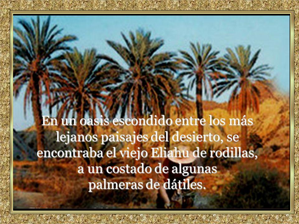 En un oasis escondido entre los más lejanos paisajes del desierto, se encontraba el viejo Eliahu de rodillas, a un costado de algunas palmeras de dátiles.