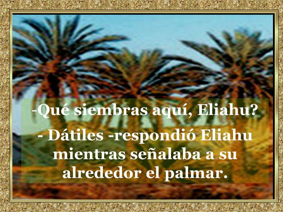 www.vitanoblepowerpoints.net Promoviendo valores desde 2008 -Qué siembras aquí, Eliahu.