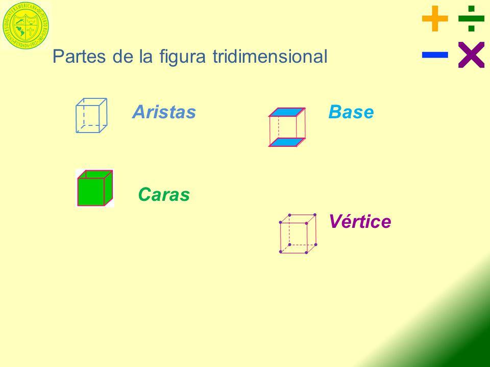 Partes de la figura tridimensional AristasBase Caras Vértice........