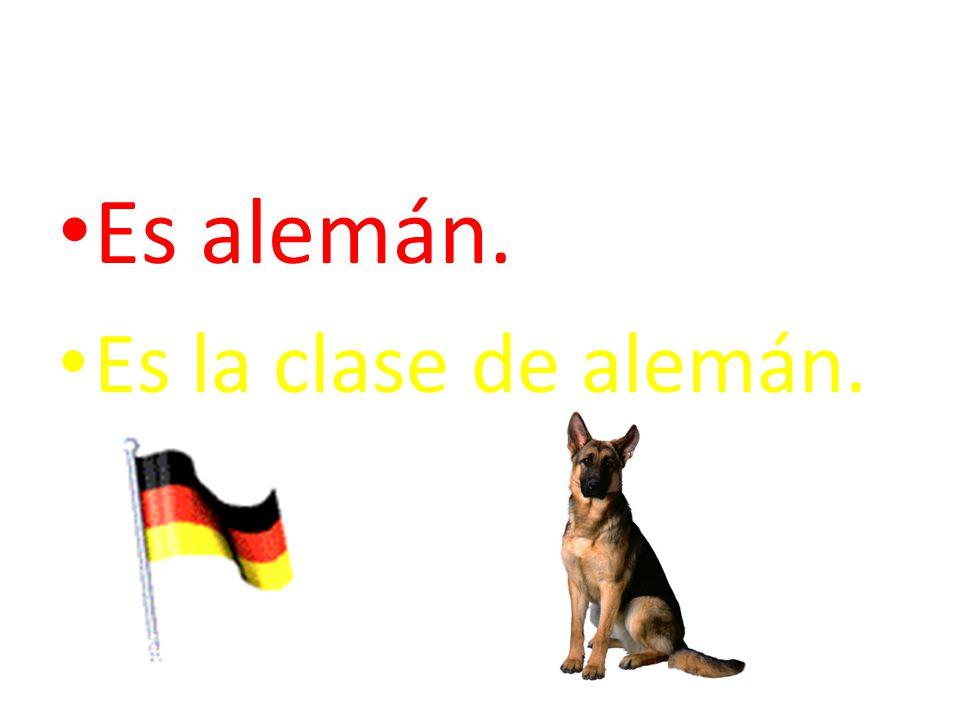 Es alemán. Es la clase de alemán.
