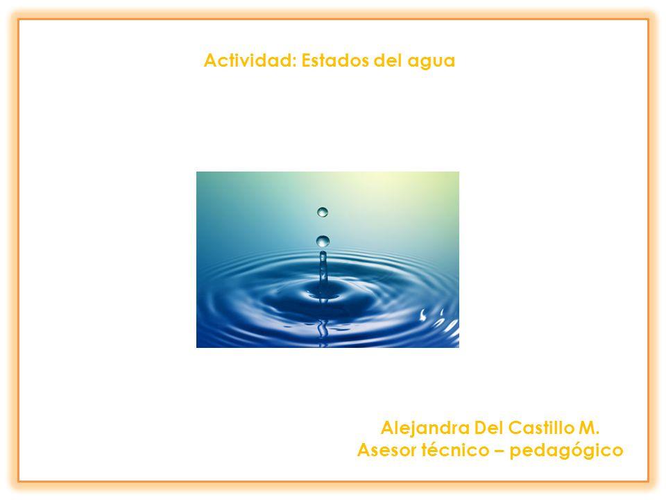 Actividad: Estados del agua Alejandra Del Castillo M. Asesor técnico – pedagógico