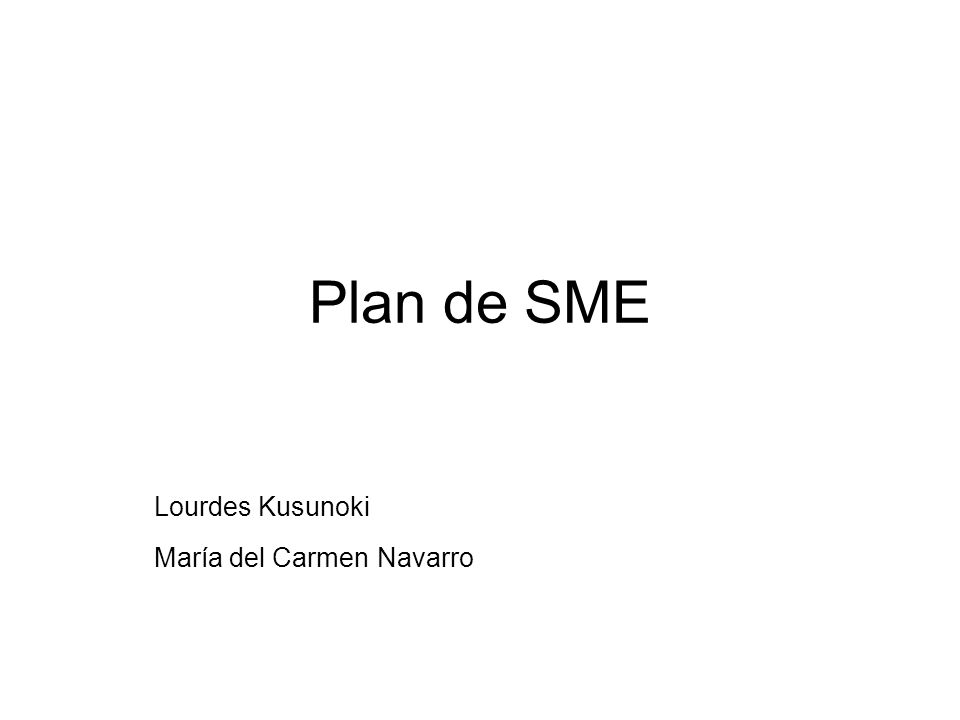 Plan de SME Lourdes Kusunoki María del Carmen Navarro
