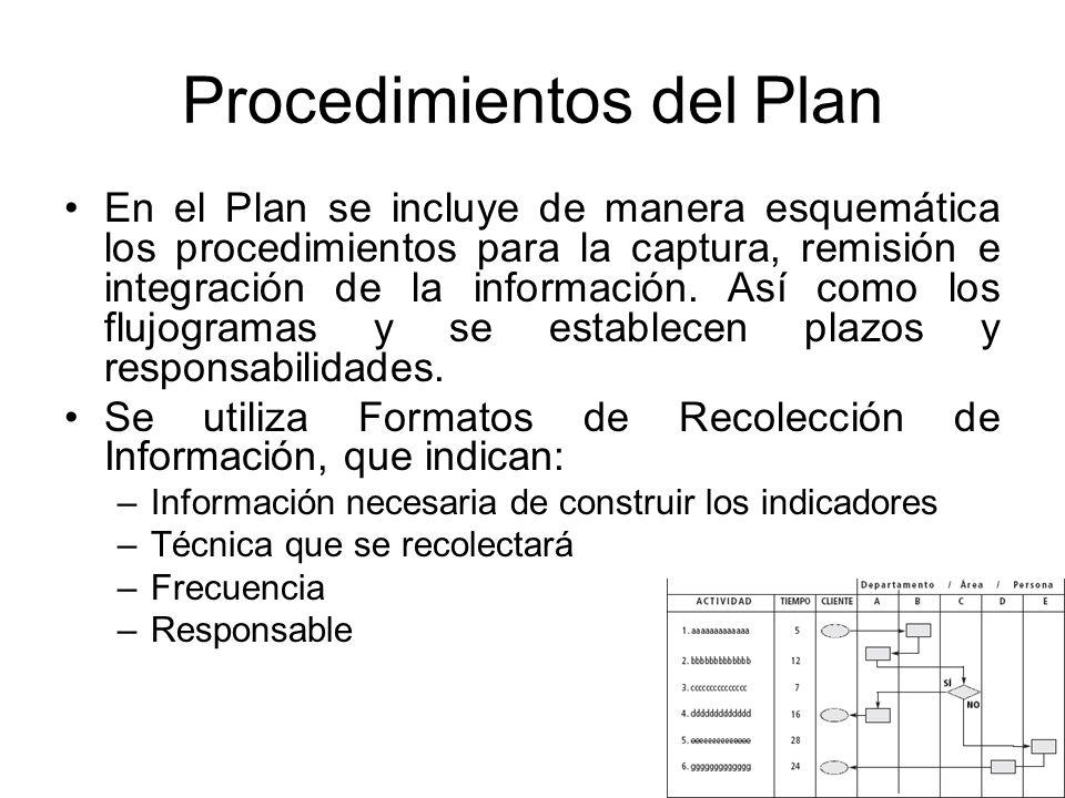 Procedimientos del Plan En el Plan se incluye de manera esquemática los procedimientos para la captura, remisión e integración de la información. Así