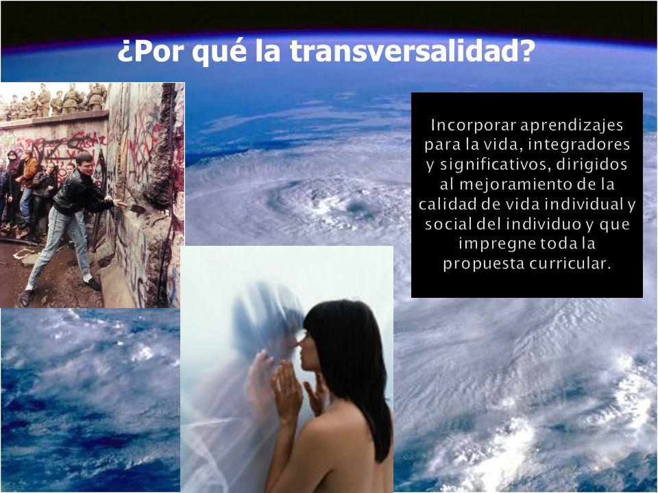 ¿Por qué la transversalidad?