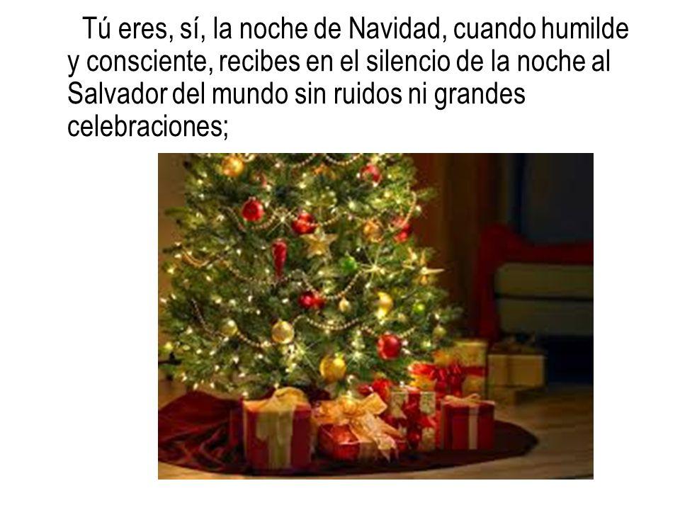 Tú eres, sí, la noche de Navidad, cuando humilde y consciente, recibes en el silencio de la noche al Salvador del mundo sin ruidos ni grandes celebrac