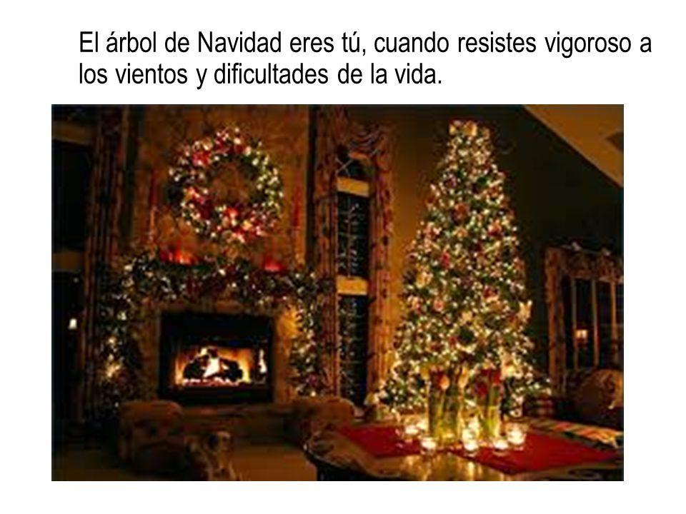 Tú eres, sí, la noche de Navidad, cuando humilde y consciente, recibes en el silencio de la noche al Salvador del mundo sin ruidos ni grandes celebraciones;