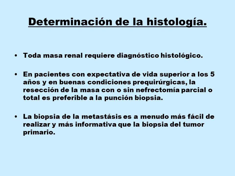 Determinación de la histología. Toda masa renal requiere diagnóstico histológico. En pacientes con expectativa de vida superior a los 5 años y en buen