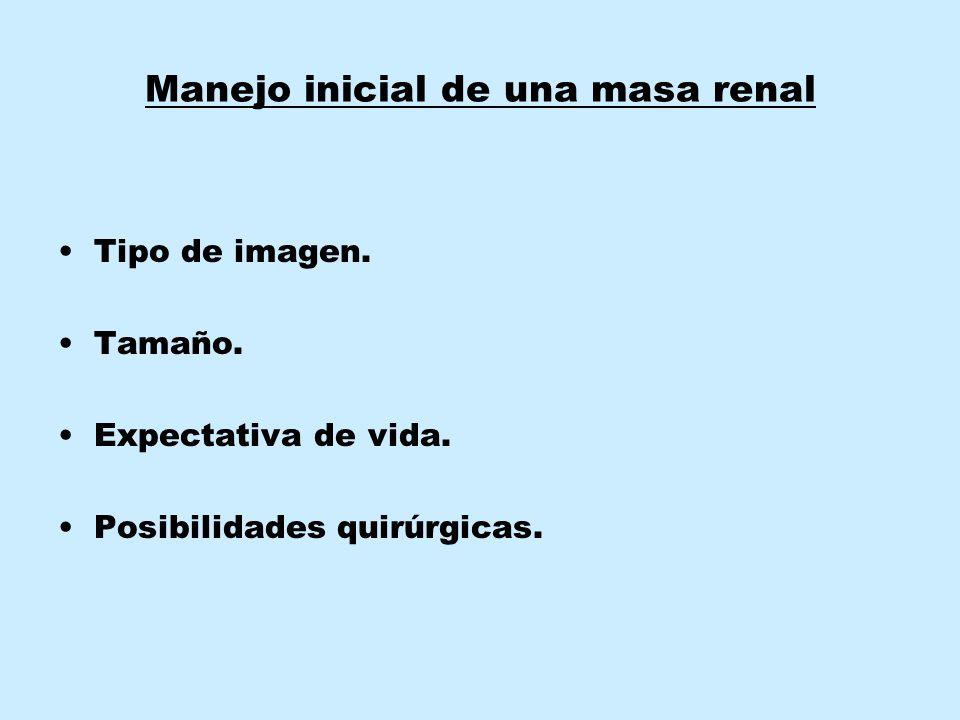 Manejo inicial de una masa renal Tipo de imagen. Tamaño. Expectativa de vida. Posibilidades quirúrgicas.