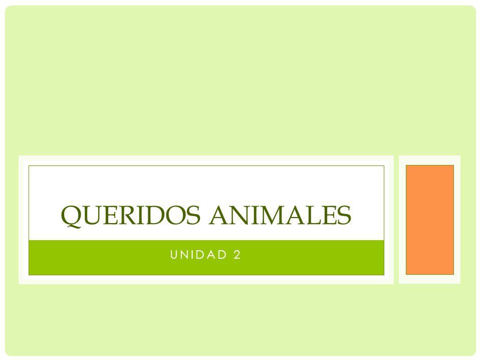 UNIDAD 2 QUERIDOS ANIMALES