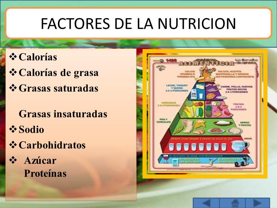 FACTORES DE LA NUTRICION  Calorías  Calorías de grasa  Grasas saturadas Grasas insaturadas  Sodio  Carbohidratos  Azúcar Proteínas  Calorías 