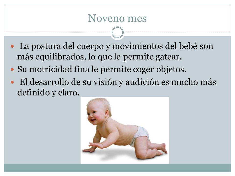 Noveno mes La postura del cuerpo y movimientos del bebé son más equilibrados, lo que le permite gatear. Su motricidad fina le permite coger objetos. E