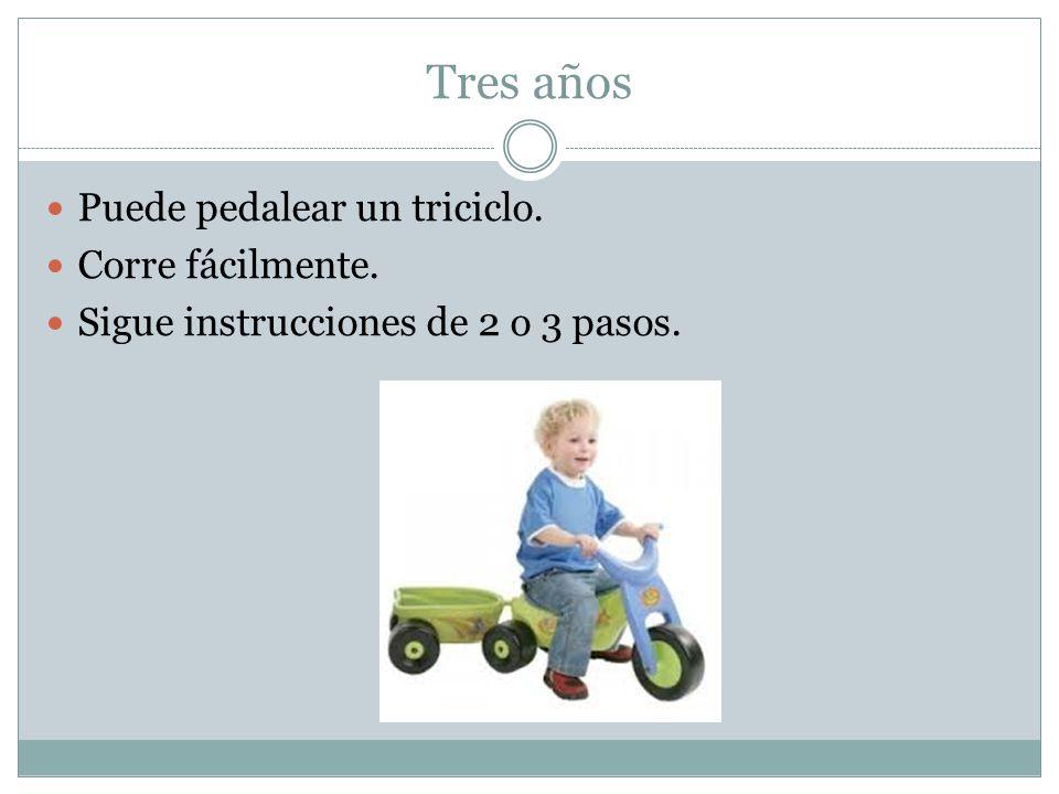 Tres años Puede pedalear un triciclo. Corre fácilmente. Sigue instrucciones de 2 o 3 pasos.