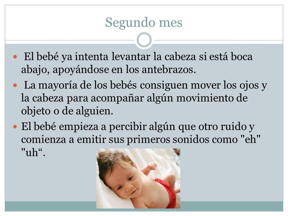 Segundo mes El bebé ya intenta levantar la cabeza si está boca abajo, apoyándose en los antebrazos. La mayoría de los bebés consiguen mover los ojos y