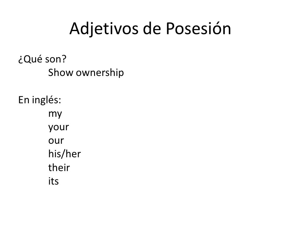 Adjetivos de Posesión ¿Qué son? Show ownership En inglés: my your our his/her their its