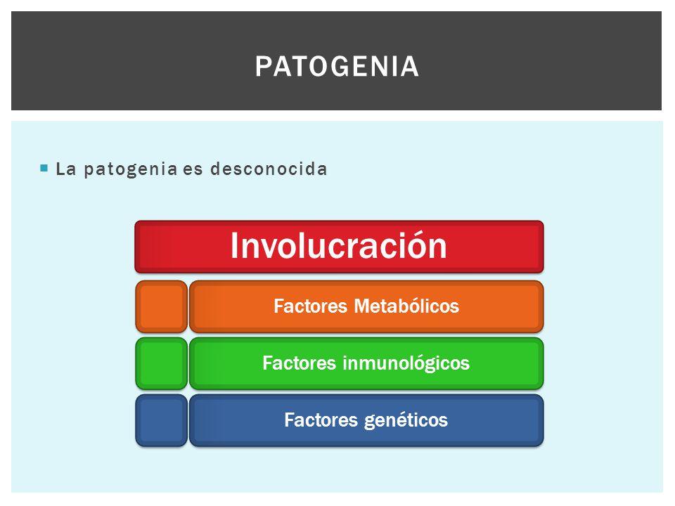  La patogenia es desconocida PATOGENIA Involucración Factores MetabólicosFactores inmunológicosFactores genéticos