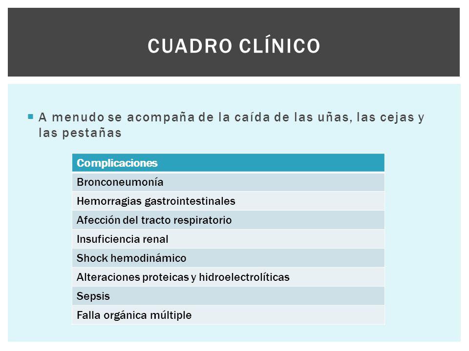  A menudo se acompaña de la caída de las uñas, las cejas y las pestañas CUADRO CLÍNICO Complicaciones Bronconeumonía Hemorragias gastrointestinales A