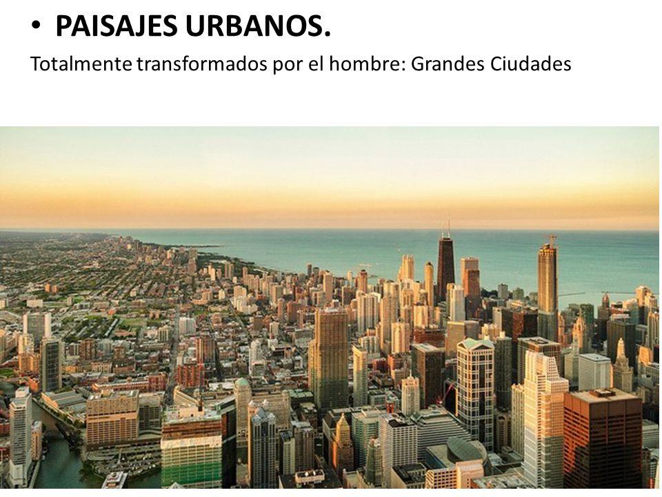 PAISAJES URBANOS. Totalmente transformados por el hombre: Grandes Ciudades