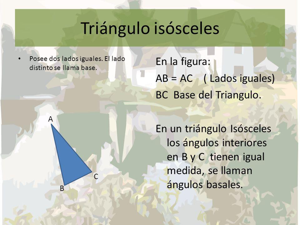Triángulo isósceles Posee dos lados iguales. El lado distinto se llama base. A C B En la figura: AB = AC ( Lados iguales) BC Base del Triangulo. En un