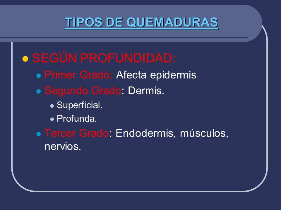 TIPOS DE QUEMADURAS SEGÚN PROFUNDIDAD: Primer Grado: Afecta epidermis Segundo Grado: Dermis. Superficial. Profunda. Tercer Grado: Endodermis, músculos