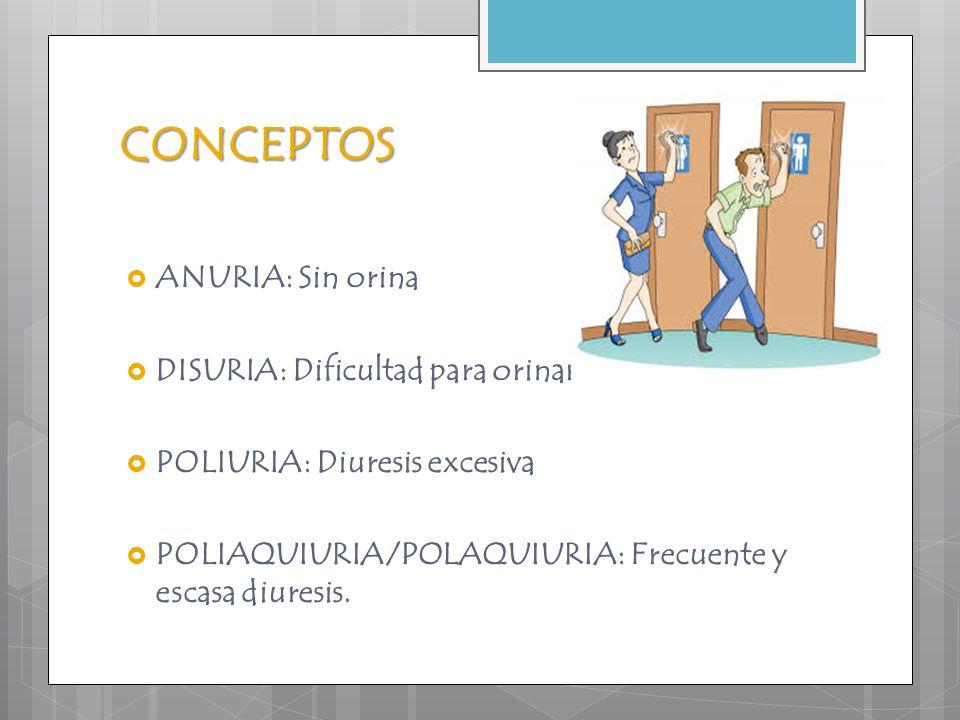 CONCEPTOS  ANURIA: Sin orina  DISURIA: Dificultad para orinar  POLIURIA: Diuresis excesiva  POLIAQUIURIA/POLAQUIURIA: Frecuente y escasa diuresis.