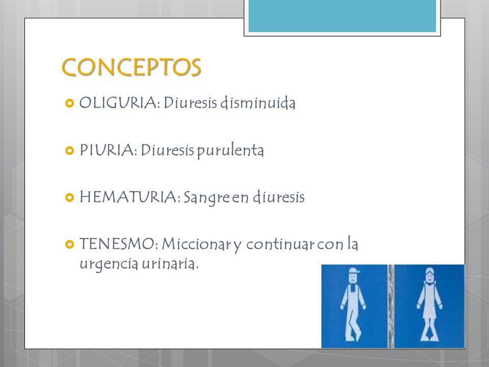  OLIGURIA: Diuresis disminuida  PIURIA: Diuresis purulenta  HEMATURIA: Sangre en diuresis  TENESMO: Miccionar y continuar con la urgencia urinaria
