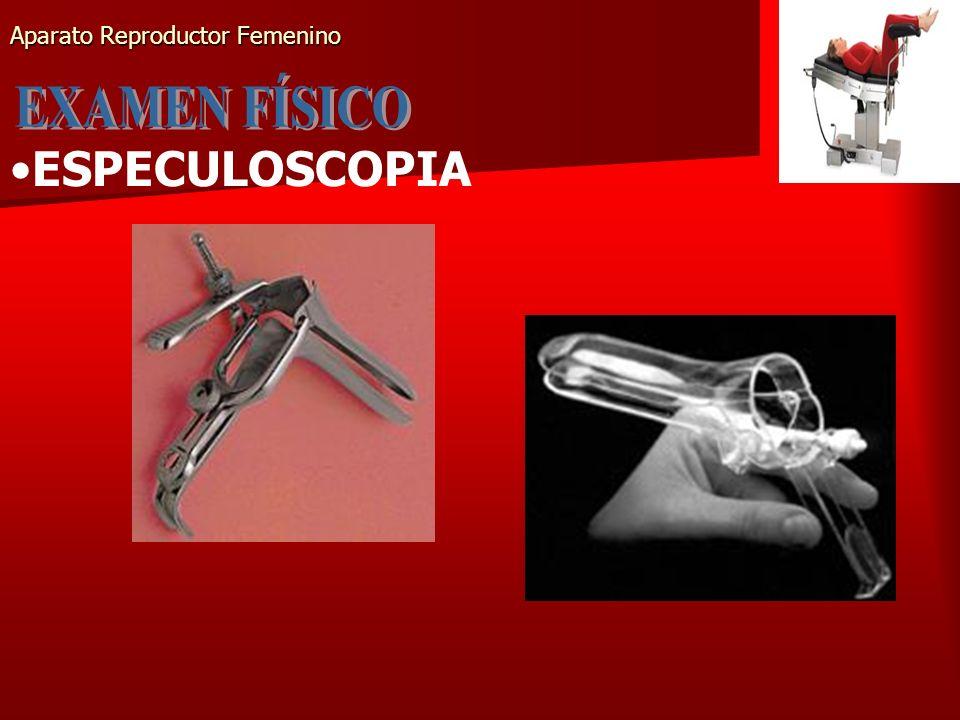 Aparato Reproductor Femenino ESPECULOSCOPIA