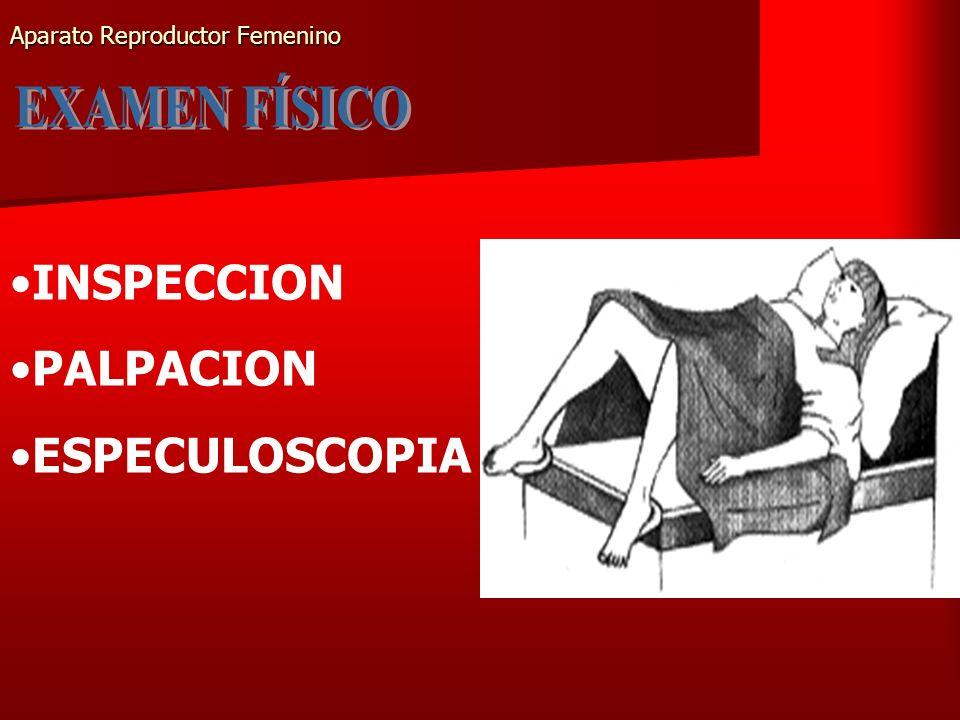 Aparato Reproductor Femenino INSPECCION PALPACION ESPECULOSCOPIA