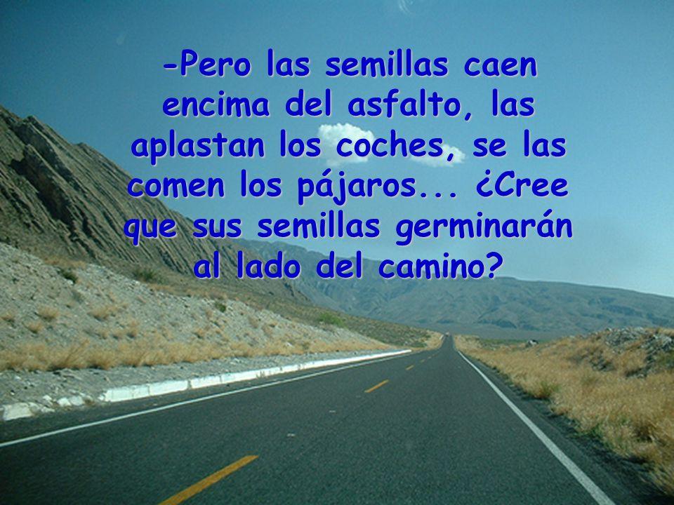 -Pero las semillas caen encima del asfalto, las aplastan los coches, se las comen los pájaros...