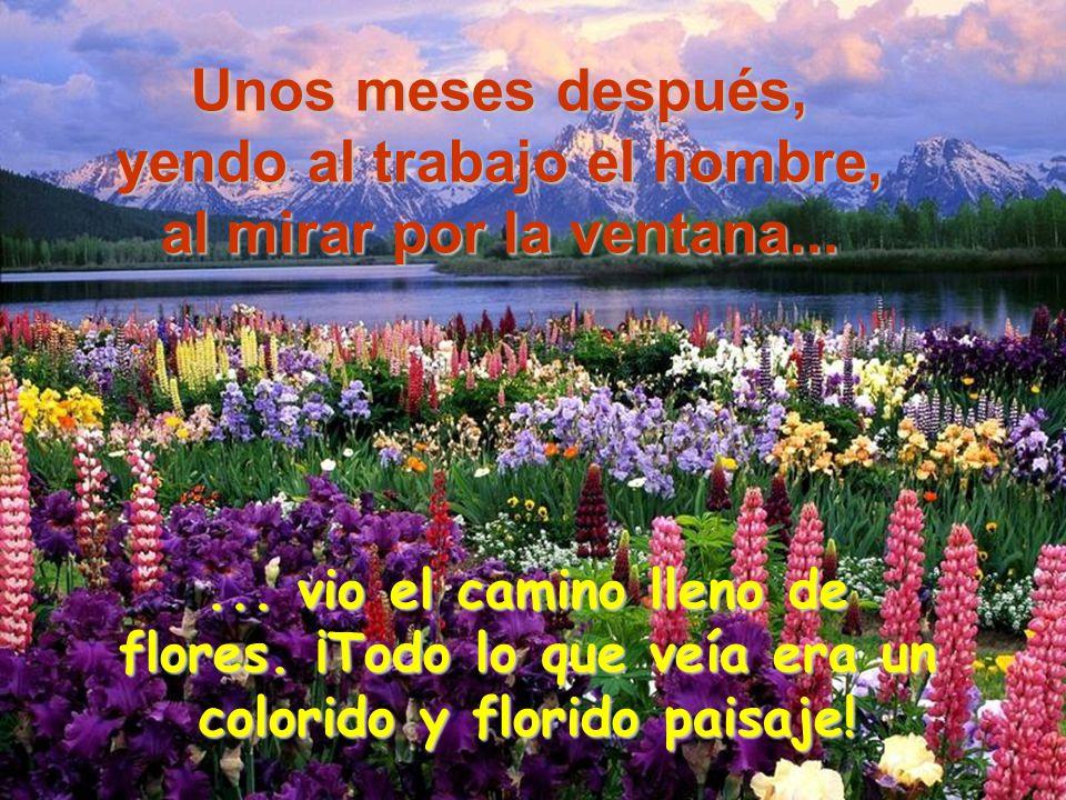 ... vio el camino lleno de flores. ¡Todo lo que veía era un colorido y florido paisaje! Unos meses después, yendo al trabajo el hombre, al mirar por l