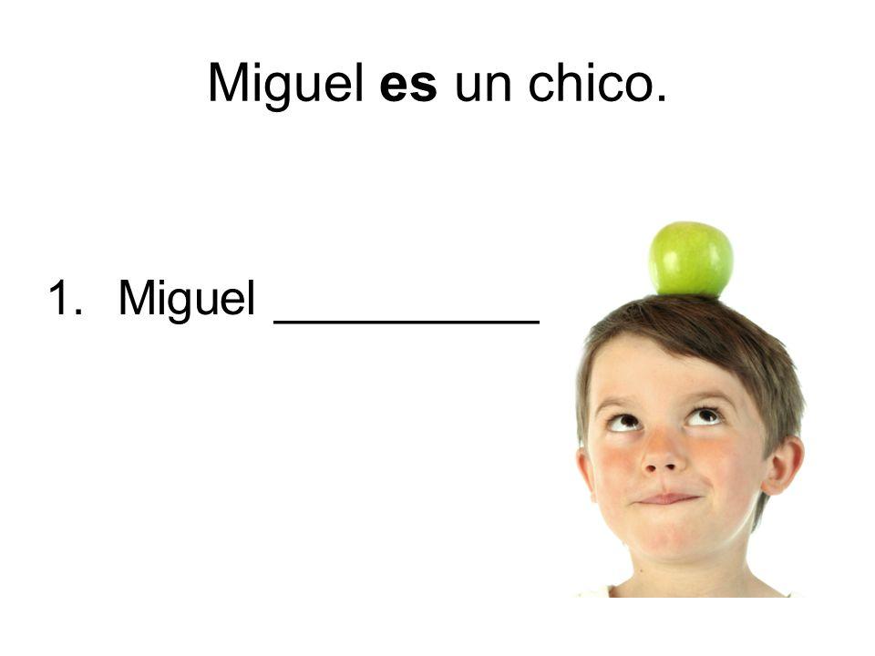 Miguel es un chico. 1. Miguel ___________