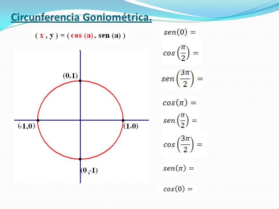 Circunferencia Goniométrica.
