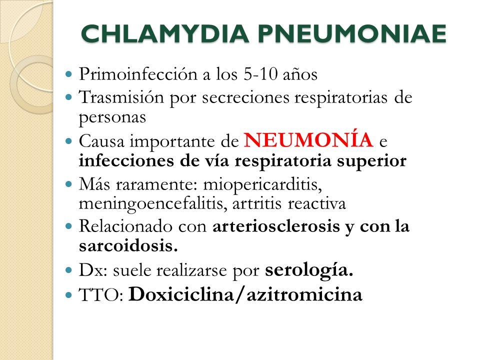 CHLAMYDIA PNEUMONIAE Primoinfección a los 5-10 años Trasmisión por secreciones respiratorias de personas Causa importante de NEUMONÍA e infecciones de