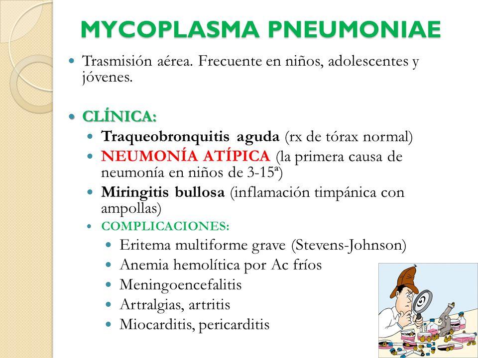 MYCOPLASMA PNEUMONIAE Trasmisión aérea. Frecuente en niños, adolescentes y jóvenes. CLÍNICA: CLÍNICA: Traqueobronquitis aguda (rx de tórax normal) NEU