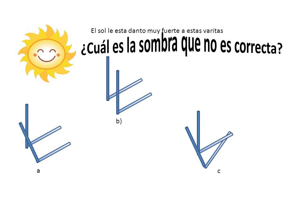 a b) c El sol le esta danto muy fuerte a estas varitas