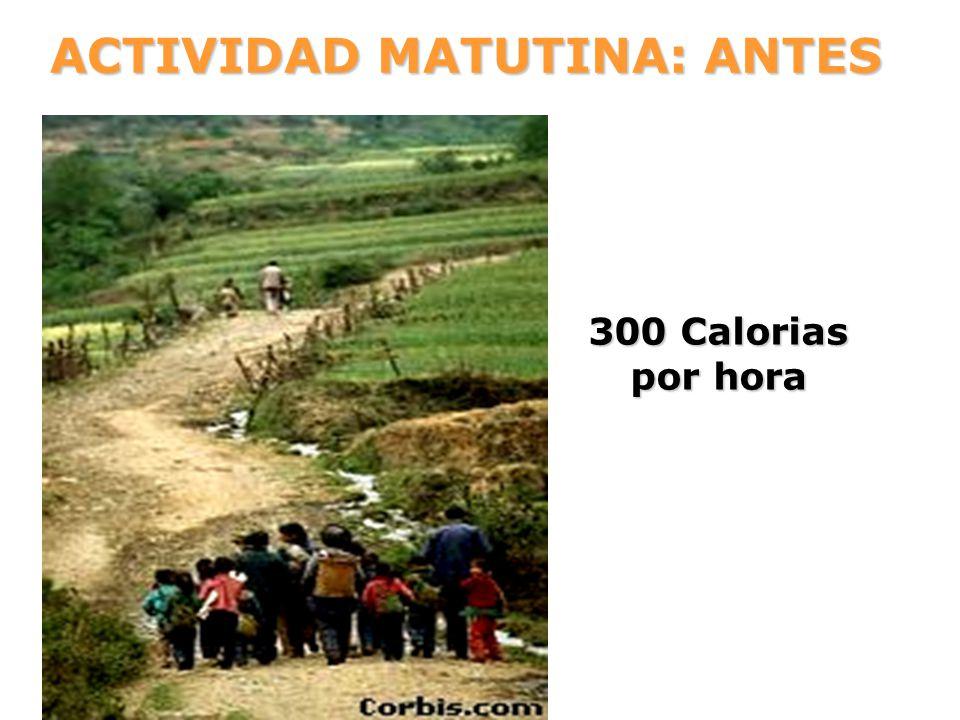 ACTIVIDAD MATUTINA: ANTES 300 Calorias por hora