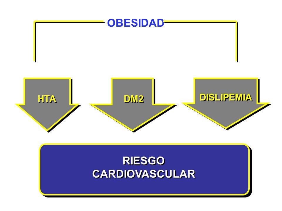 OBESIDAD RIESGO CARDIOVASCULAR HTA DM2 DISLIPEMIA